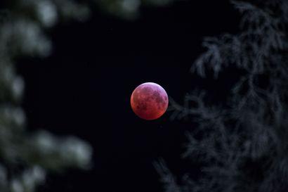 Sakari Kanasaari ottaa komeita kuvia pimeässäkin –Taivaalla on paljon kuvattavaa syksyllä ja talvella