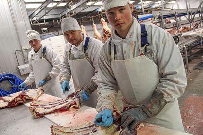 Yrityksille joustavaa tukea rekrytointiin – lihanjalostusyritys Rönkä Oy:lle osaajia RekryKoulutuksen ja oppisopimusopintojen kautta