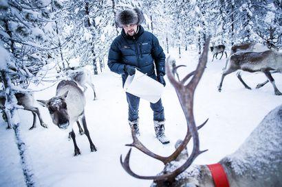 Porotilayritys Arctic Land Adventure ja Janne Honkasen Luxury Action palkittiin matkailugaalassa