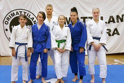 Koyaman judokoille kultaa ja kolme pronssia Orimattilasta