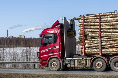 Stora Enson puunhankintaan ei ole tulossa isoja muutoksia – pohjoisessa puuta ohjataan Veitsiluodon-tehtaan sijaan Ouluun