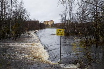 Talvi lyhenee kuukaudella – näin Suomen ilmastopaneelin raportti ennustaa vuodenaikojen muuttuvan Pohjois-Suomessa