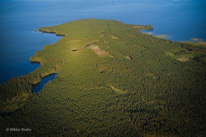 Aavoja järvimaisemia, suppia ja Euroopan Unionin vanhin kalliomuodostelma – Rokua Geopark kertoo historiallista tarinaa alueen synnystä