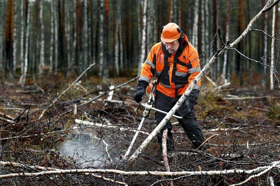 Urmas Niemellä on lähes 40 vuoden kokemus metsätöistä. Reissuhommista hän on saanut tuntumaa keikkamuusikkona.