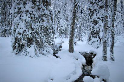 Pudasjärven marraskuu oli leuto ja sateinen – sateet muuttuivat lumeksi loppukuusta