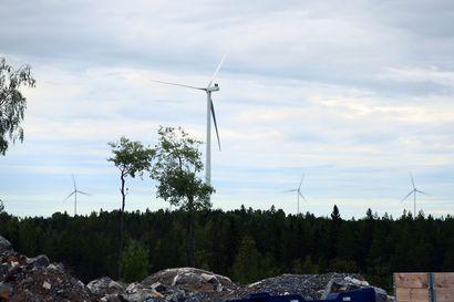 Piiparinmäellä tuulivoimapuiston rakennusurakassa ollaan loppusuoralla – suurin osa voimaloista tuottaa jo sähköä kuluttajille