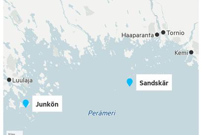 Suden epäillään tappaneen poroja Perämerellä – Haaparannan saaristosta on löytynyt useita raatoja