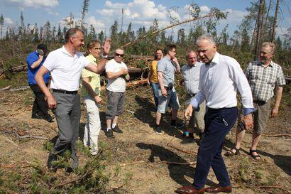 """Maa- ja metsätalousministeri Jari Lepältä toivottiin apua Paula-myrskyn tuhoihin – """"Jos halutaan sotkea puumarkkinat, niin sitten alennetaan verotusta"""""""