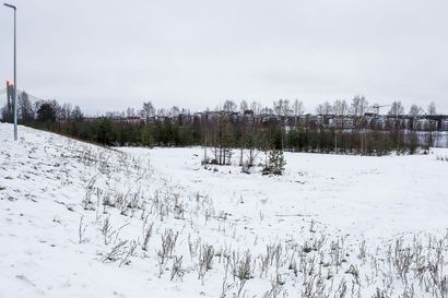 Kaupunginjohtaja ja kaupunginhallituksen enemmistö eri linjalla rakentamisen poikkeamisluvista Rovaniemellä