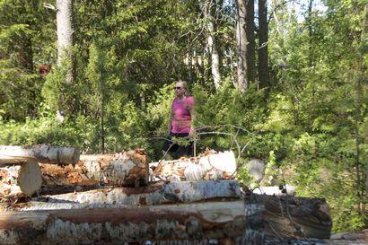 Juhaninpuisto pienenee ja kasvillisuus muuttuu