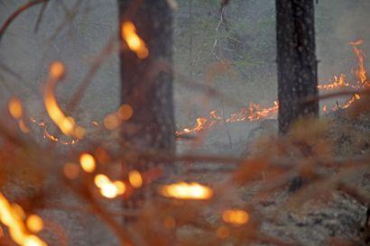 Nyt palaa muuallakin: Venäjältä savuhaittoja Sallaan, Varsinais-Suomessa sammutetaan kolmatta päivää