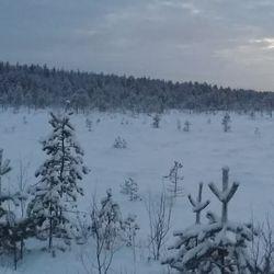 Auringonlasku eilen n. klo 14.30 aikoihin,yöllä -20 c pakkasta,talven tuntua.