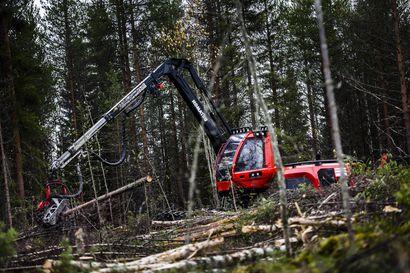 """EU:n uusi metsästrategia määrittelee metsäalan tulevaisuuden suuntaviivat, mutta Suomi haluaa pitää poliittisen päätösvallan jatkossakin itse – """"Pohjois-Pohjanmaata on turha verrata Etelä-Eurooppaan"""""""