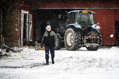 """Nuori viljelijä Kaisa Pihlaja kokosi turvalistan koronakevään varalle: """"Nyt ei ole aika leikkiä sankaria"""""""