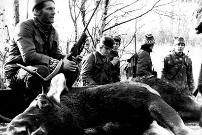 Vanhat kuvat: Hirvijahti oli vauhdissa Hailuodossa 70-luvulla – karhunkaatajia ja sudenmetsästäjiä riitti Pohjois-Suomessa