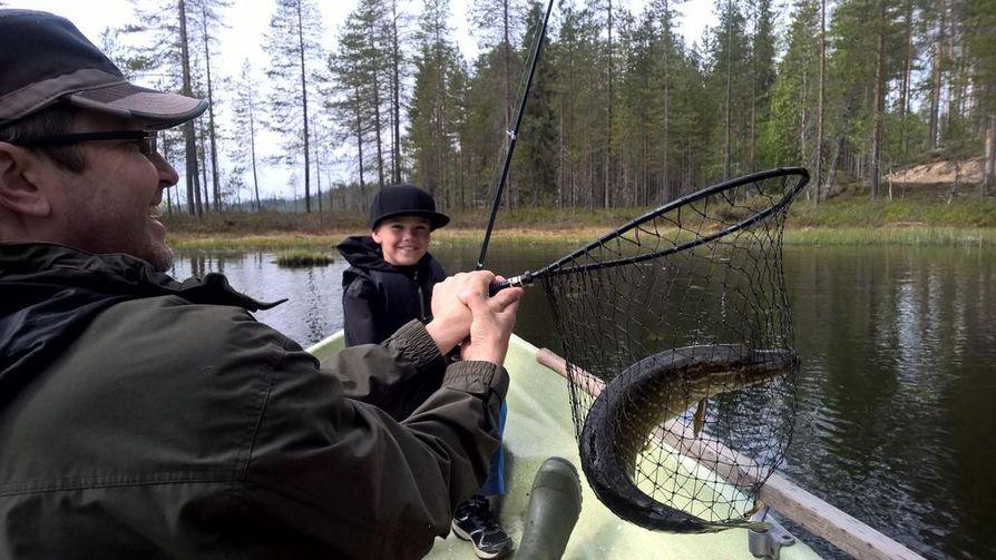 Kalakuva - Matiaksen ensimmäinen hauki kesällä 2017 oli 60 cm pitkä ja tuli Taivalkosken Valkeiselta. Matias luuli ensin että Kuusamon Räsänen oli jäänyt lumpeeseen kiinni.