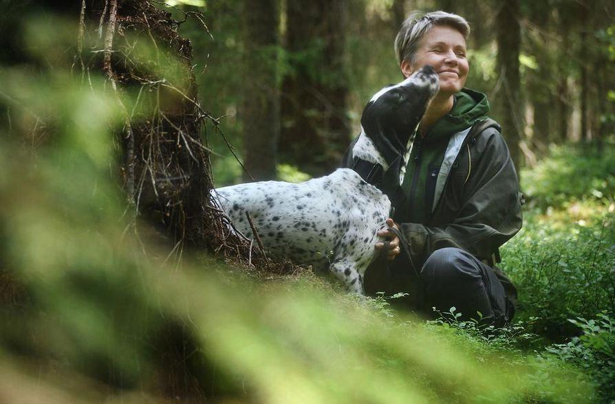 Auvergnenseisoja Vihi on vasta uransa alussa. Tanja Karpelan luontokartoittajiin kuuluvat lisäksi chesapeakenlahdennoutaja Ando, työlinjainen saksanpaimenkoira Vire sekä kartoituskokeilut ensimmäisenä aloittanut kooikerhondje Chanti.