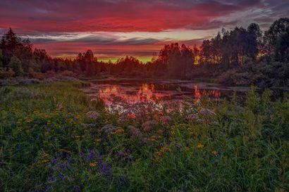 Värien melskettä Ounasjoella –Tämä taianomaisena hehkuva valokuva äänestettiin Kesäfoto-kisan voittajaksi