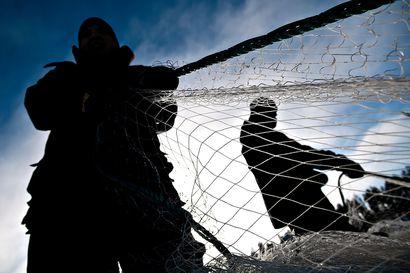 Ammattikalastusta rajoitetaan Kantokylän yhteisellä kalavedellä Kokko- ja Kylmäjärvillä