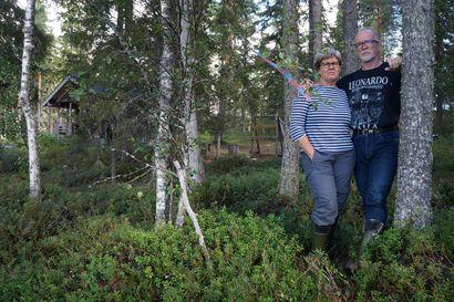 """Hakkuu yltää Aikkiloiden rantasaunalle - Metsänomistaja toimii lain puitteissa, mutta mökinomistajat ihmettelevät: """"Meidän pitää pyytää häneltä lupa, mutta hänen ei pidä pyytää meiltä mihinkään lupaa"""""""