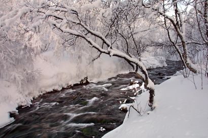 Sulaojalle ei tule vedenottamoa koskaan – Karigasniemen kuuluisa lähde on saamelaisille pyhä, joten Metsähallitus rauhoitti sen
