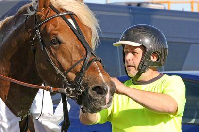 Niemen Eemilin pitkä kilpailuturnee palkittiin - Kolarin liinaharja voitti Kaustisella Toto75-lähdön