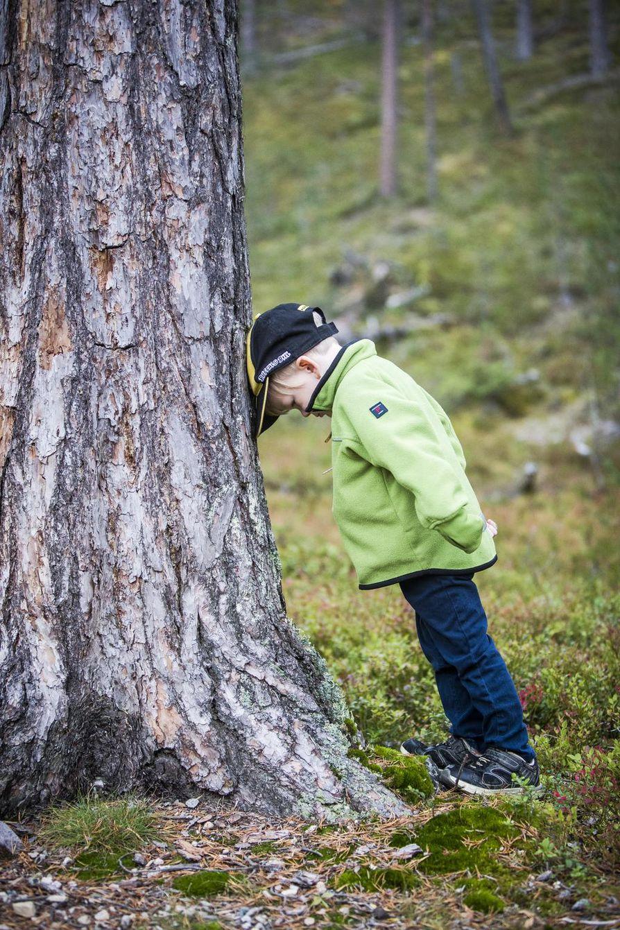 """Suomen Ladun perheliikunnan hankesuunnittelija Susanne Blomqvist ohjeistaa aikuisia opettamaan lapselle heti ensimmäisestä lähiretkestä lähtien, että luonnossa ollaan vieraana. """"Luonnossa ollaan niin kuin kylässä. Ollaan nätisti, eikä melskata ja roskata."""" Ei haittaa vaikka välillä puun kanssa pistäisi silti pääpainiksi."""