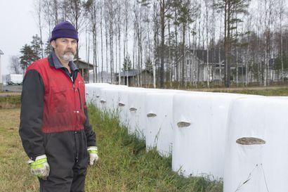 Rehupaali-ilkivallan korjaaminen teettää viljelijöillä lisätyötä –paalien viiltely on toisen omaisuuden rikkomista