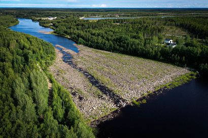 Työt jatkuvat tänä kesänä Iijoella lohen palauttamiseksi jokeen – tekeillä nousu-uraa ja virrankehitintä