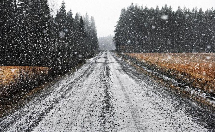 Tätä on luvassa ensi viikollakin: lauhaa ja lumetonta.