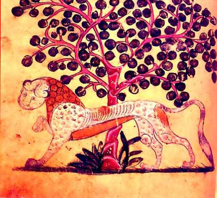 Leijona taatelipuun alla. Joissakin tulkinnoissa islamin viininjuontikiellon ei ole nähty koskevan taateliviiniä. Juoma on yhä sallittu sunnalaisessa hanafi-koulukunnassa.