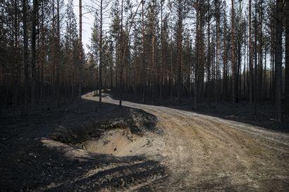 Muhoksen metsäpalosta aloitettu palonsyyntutkinta – rikosta ei toistaiseksi epäillä