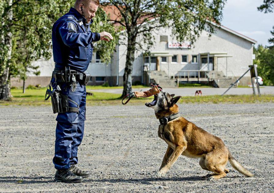 Horkka on koiranohjaaja Sauli Ylikuljun koira sekä töissä että kotona. Kokenut partiokoira on vuosien varrella oppinut erottamaan, milloin ollaan töissä ja milloin vapaalla.