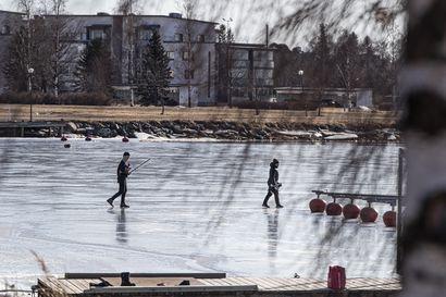 Talven jäät olivat vähäisiä mutta niitä riitti tavallista pitempään