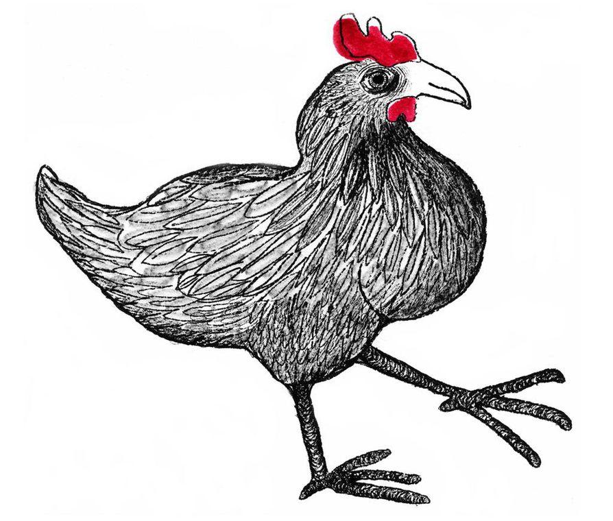 Geneettisesti kanat ovat tyrannosaurusten lähimpiä elossa olevia sukulaisia.