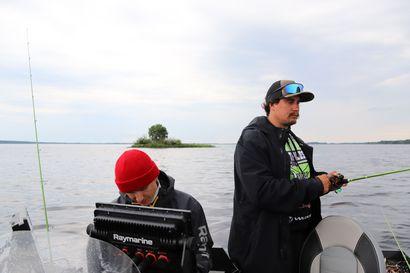 Viime kesän kalastuskokemus sai ammatikseen kalastavan palaamaan jälleen Uljualle – jigaamalla voi tavoitella körmyniskoja aivan pohjan tuntumasta