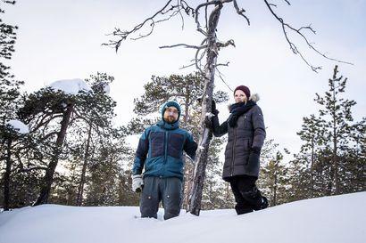 """""""Facebook-postauksesta se lähti"""" – Luonnonperintösäätiö kerää rahaa Ounasvaaran luonnon suojelemiseksi"""