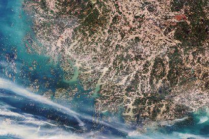 Ennätyslämmin talvi valutti mereen ennätysmäärän ravinteita: Saaristomeren fosforikuorma ylsi kolmessa kuukaudessa koko ennätysvuoden lukuihin