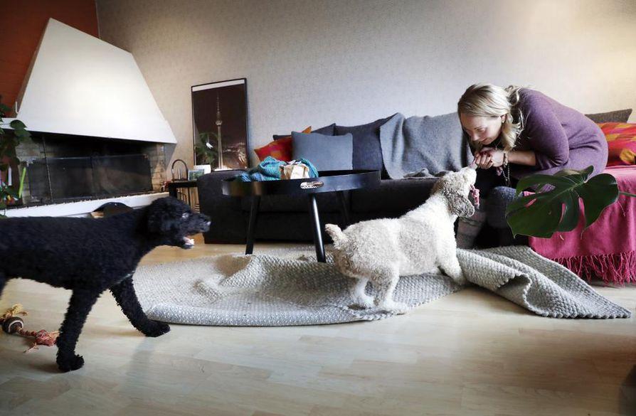 Maria Kaupin koirat Martti ja Luna on totutettu jo pentuina yksinoloon, eikä ongelmia ole ilmennyt. Kauppi kertoo, että perheessä töihinlähtörituaali on aina sama: koirat menevät omille nukkumapaikoilleen ja niille annetaan makupala.