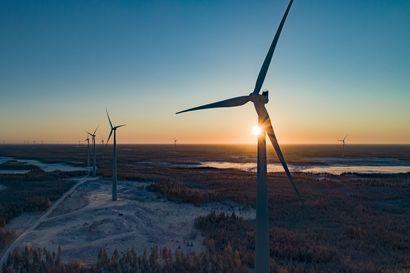 Luonnon ja tuulivoiman konflikti