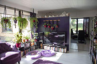Väri osana identiteettiä–katso kuvia violetista kodista vehreine viherkasveineen