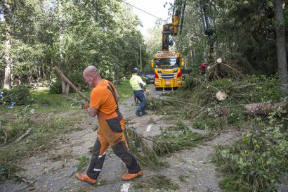 Meteorologi: Aila näyttää aiheuttaneen tämän vuosituhannen myrskyistä kolmanneksi eniten pelastustehtäviä