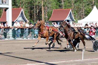 Härmän Toto75-avauksesta Lappiin kaksoisvoitto - Välkun Tuisku löi Rovaniemen Evartin juhannusmaililla