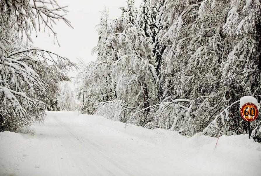Kainuussa on painittu vaikean lumitilanteen kanssa jo useiden viikkojen ajan.