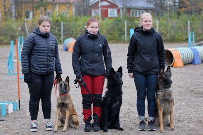 Mitalisadetta koiraharrastajille – Harrastus periytynyt äideiltä tyttärille
