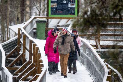 """Ranuan eläinpuistossa ei olla luovuttamassa talven suhteen: """"Totta kai meidän täytyy uskoa, että talvesta selvitään"""""""