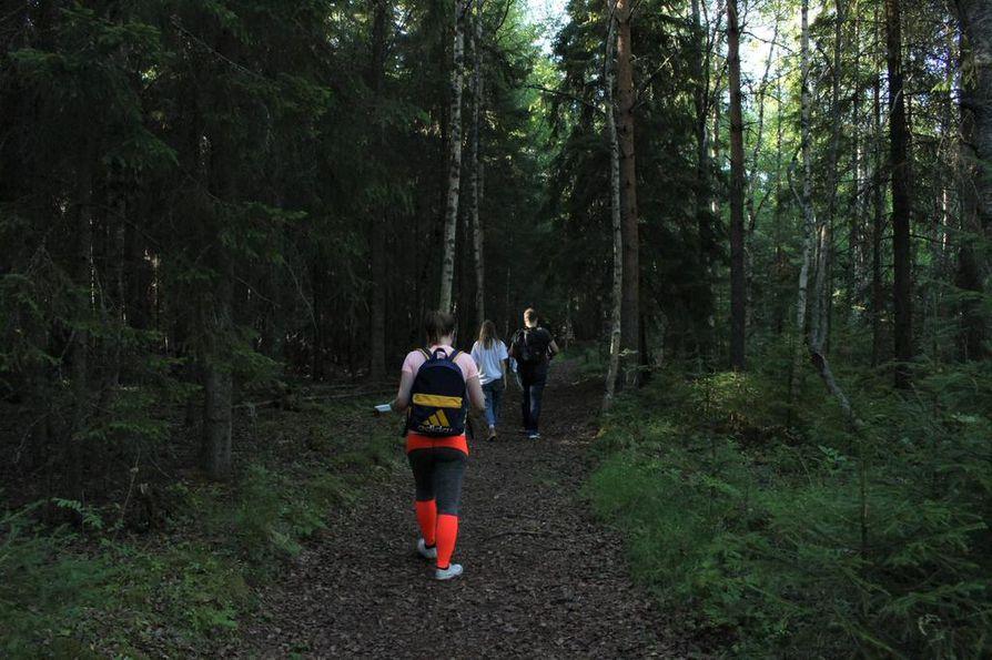Polku vie metsän halki lossirannasta vanhojen rakennusten luo.