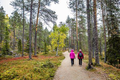 """""""Kyse ei ole iästä vaan suhtautumisesta"""" – Kymmenet uuvahtaneet vaeltajat työllistävät syksyllä pelastajia Lapin kansallispuistoissa"""