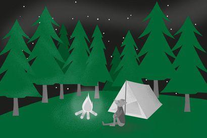 Essee: Vain metsässä ihminen voi perustavasti ymmärtää, ettei hänellä ole erityisasemaa luonnon kiertokulussa