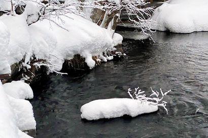 Tammikuun parhaassa sääkuvassa uiskentelee mainio lumiporo – vuoden alun suosituin kuvauskohde oli taivaalla pilkahteleva aurinko